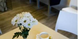 L'Hôtel Sèquia Molinar est un hôtel moderne situé à 3 km de Ripoll, dans les Pyrénées catalanes. Il propose des chambres élégantes avec connexion Wi-Fi gratuite et télévision. Le chauffage de l'hôtel fonctionne grâce à un système d'exploitation d'énergie géothermique naturelle. Il dispose d'un café-bar et d'une salle de télévision paisible. Vous trouverez aussi une terrasse ombragée et une aire de jeux pour enfants. La réception de l'hôtel vous propose un local à skis et à vélos. L'hôtel La Sèquia Molinar est situé à Campdevànol, à 20 km de la station de ski de La Molina. La région est idéale pour les randonnées pédestres, cyclistes ou à cheval. Vous pourrez facilement rejoindre Barcelone et Gérone en voiture ou en train. L'hôtel possède un parking sécurisé gratuit sur place.