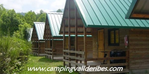 This camping site is just 500 metres from the Ribes-Vila station servicing the zip trains to Vall de Núria. It features a seasonal outdoor swimming pool and offers ski-to-door access.
